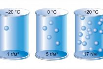 Влияние влажности воздуха на здоровье человека: какую опасность таит излишне высокая или низкая влажность