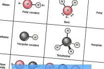 Полярные и неполярные молекулы