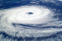 Как избежать разрушительных последствий сильного ветра