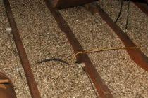 Устройство чернового деревянного пола по лагам