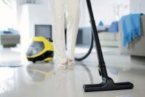 Паровой пылесос для дома. преимущества и недостатки паровых пылесосов