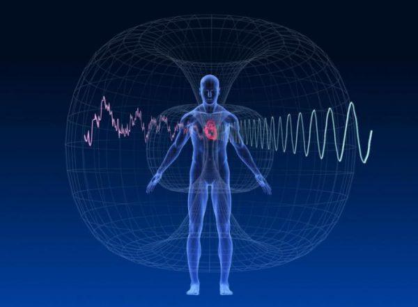 Влияние ЭМИ на системы человека