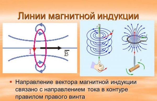 Ориентация индукционных трасс поля