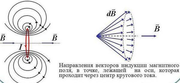 Магнитное поле кругового тока в контуре