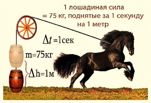 Экспериментальное определение лошадиной силы