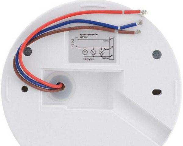 Нижняя часть устройства: видны выходы проводов, стандартная схема подключения и выемка для вывода проводки в корпусе