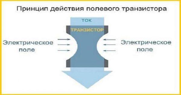 Структура и принцип действия полевого транзистора