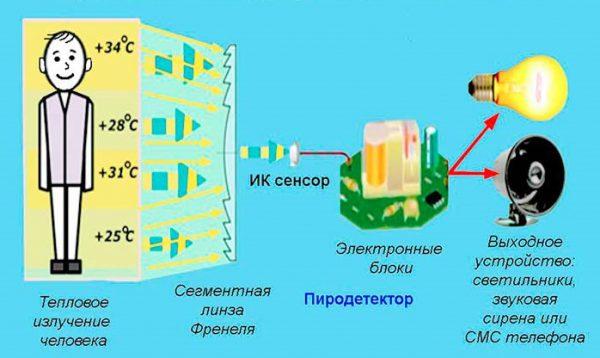 Сигнализация с инфракрасными сенсорами