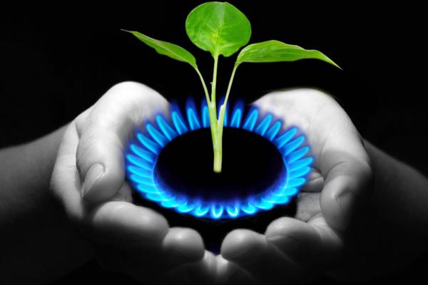 Производство биогаза – будущее энергетики